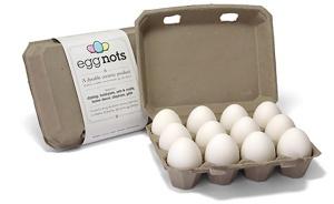 egg-nots-packaging1