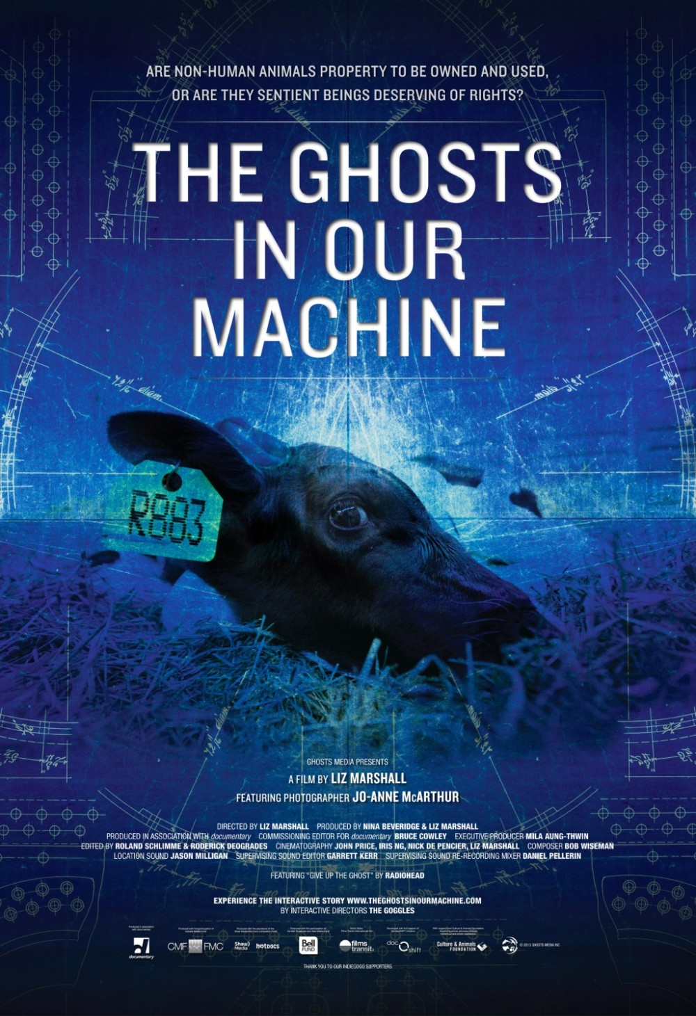 ghosts_in_our_machine_xlg